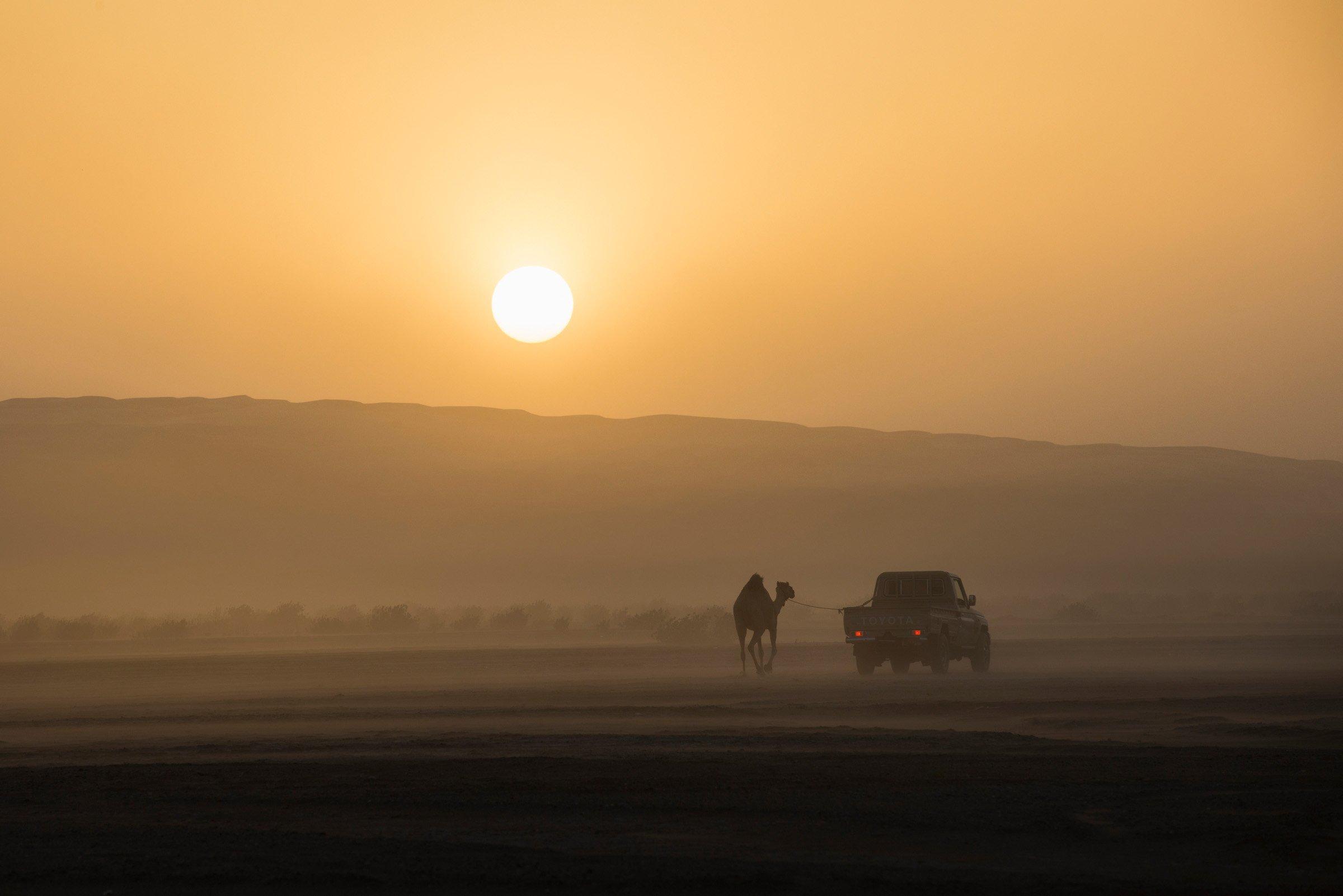 Oman_1152_2585