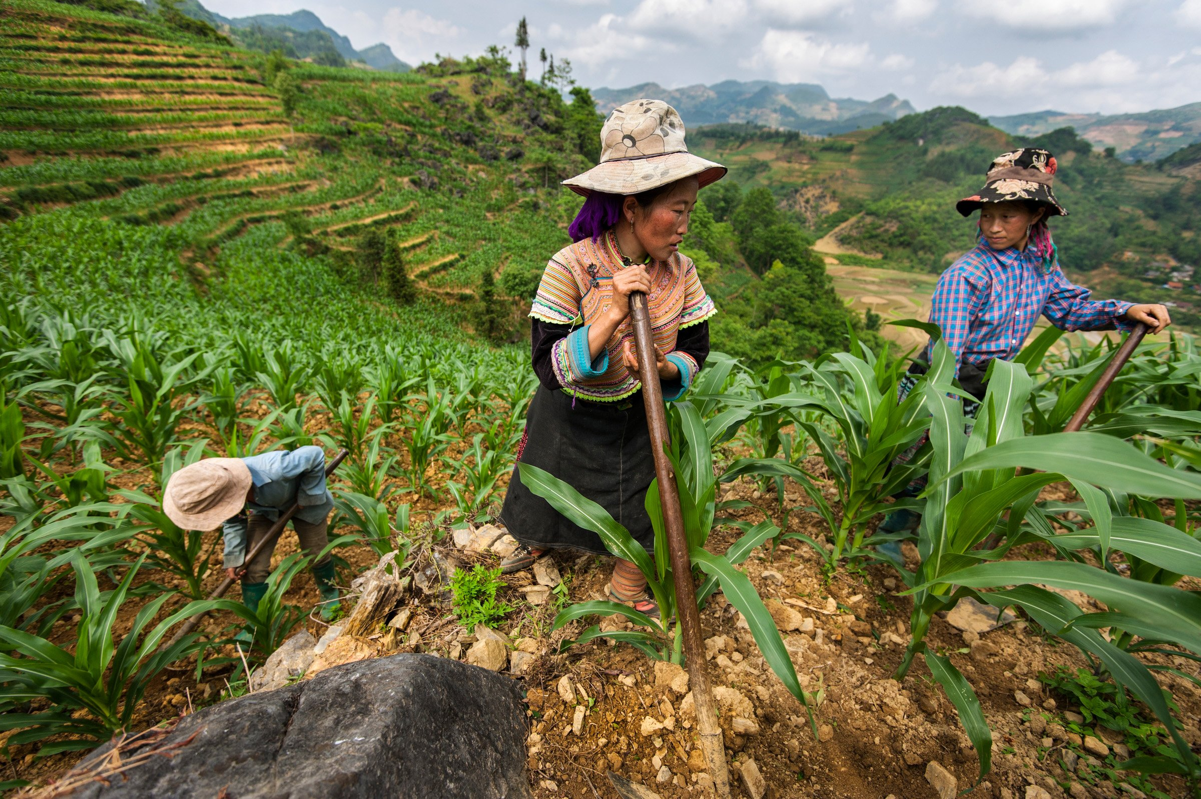 Lao Cai province of northern Vietnam borders the Chinese border and is home to a number of different ethnic minorities that have lived in the area for centuries. Today, 54 recognized ethnic minorities of Vietnam still live in Lao Cai province, including the H'mong, Tay and Dzao people.