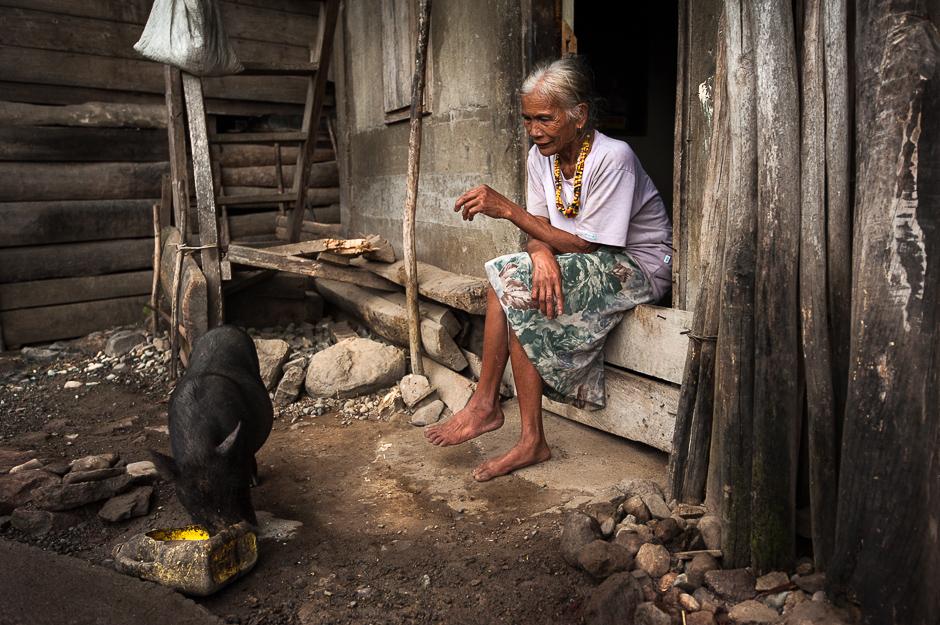 Kalinga woman feeding pig