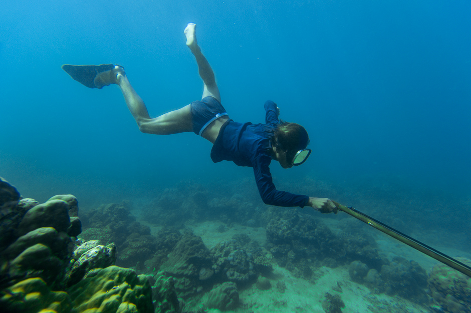 Alby Spearfishing